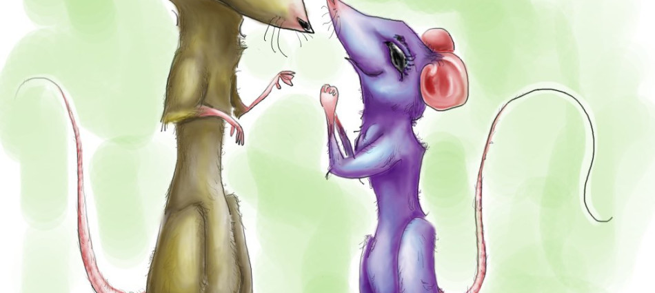 rat love digital illustration