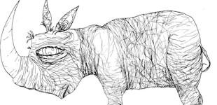Oh Rhino, rhino
