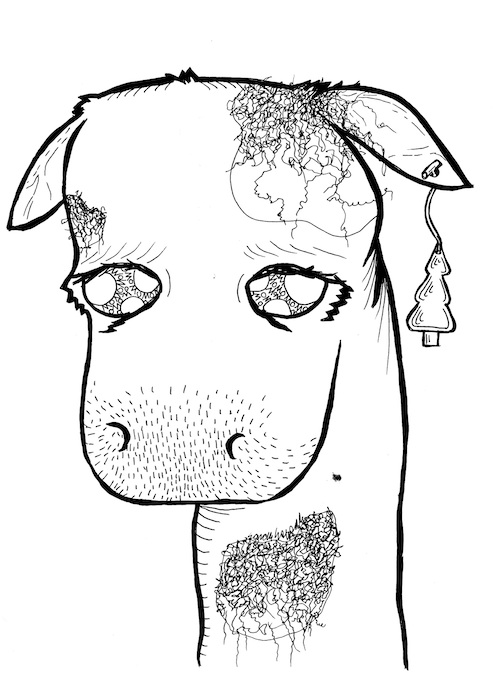 coloring page for adults cow pop surrealism