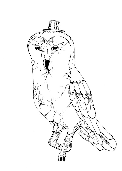 owl surrealism adult coloring page